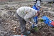 Sadzenie lasu Tulice 28_03_2015 r_48