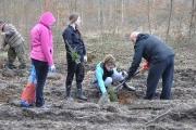 Sadzenie lasu Tulice 28_03_2015 r_52