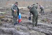 Sadzenie lasu Tulice 28_03_2015 r_53