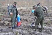 Sadzenie lasu Tulice 28_03_2015 r_54